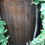 仙人掌 - ここの入り口で頭ゴッツンコの洗礼を…