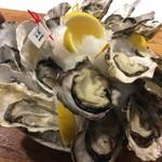 エカイエJP - 色々な種類の牡蠣を食べ比べて下さい