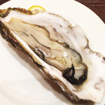 65250978 - 大きな生牡蠣!