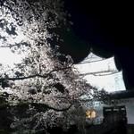65270638 - お城と桜