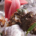 魚料理 ろっこん - お造りの盛り合わせ