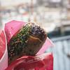 レストラン櫻 - 料理写真:ブラックペッパーてりやきチキンロール