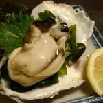 65377554 - 隠岐産 絶品岩牡蠣