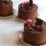 クリケット - ジャンドゥーヤ  ヘーゼルナッツ入りの濃厚なチョコレートムース