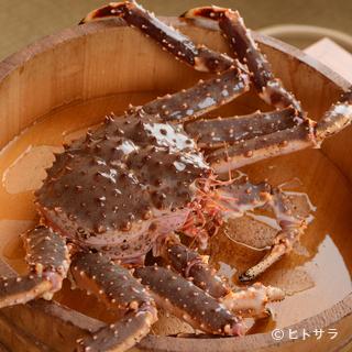 北海道の名店と同じ仕入れ先から活け蟹が直送で届きます