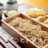正音 - 料理写真:大きなエビ天が贅沢に堪能できる『車海老天もり』