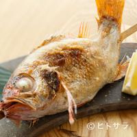魚秀 - 言わずと知れた日本海の高級魚『山口 のどぐろ塩焼き』
