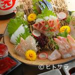 山せみ - 三浦半島の漁師さんから直送される『刺身の盛り合わせ』