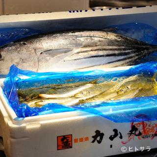 築地から独自のコネクションで調達する「鮮魚」が店の自慢