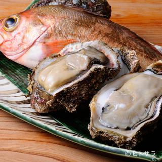 その日、築地で水揚げされた魚を懐に優しい価格で味わえる店です