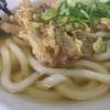 かねいしうどん - 料理写真:ごぼう天うどん530円