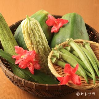 沖縄の契約農家さんから仕入れた野菜を使用しています