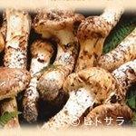 魚松 - 豪華!! 高級食材の「松茸」と「近江牛」が食べ放題