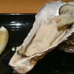 65465953 - 兵庫県室津産 生牡蠣