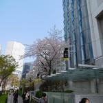 65478649 - 桜