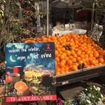 65506172 - フレッシュオレンジジュースのためのオレンジ?