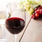 フットニック - 赤白グラスワイン