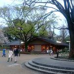 パークサイドカフェ - 上野公園に佇む平屋のカフェ