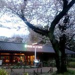 パークサイドカフェ - 満開の桜