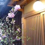 65581734 - お店の前には八重桜があしらわれていました