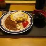 名代 富士そば - 「カレーカツ丼」です。