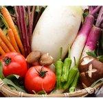 ファーマーズガーデン - 新鮮なとれたて有機野菜