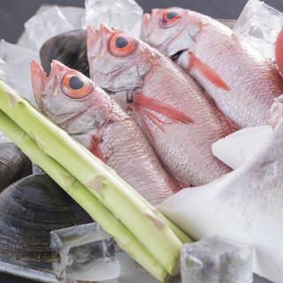 鮮魚も充実!!