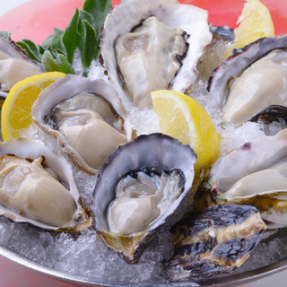 その時期一番旬な生牡蠣を!本日の生牡蛎!