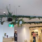 Cafe R.O.F - 1704_マーメイド海遊館店_店内①