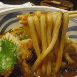 釜揚げ饂飩 唐庵 - エッジの効いた剛麺タイプ