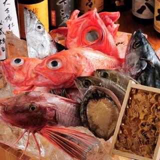 和歌山で獲れた魚介類を中心に、獲れたばかりの鮮度の良さ