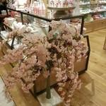 AWkitchen TOKYO - 他店の桜(おまけ)
