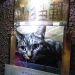 山猫軒 - 看板猫