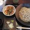 みぞれ - 料理写真:ランチセット大盛り+小エビ天丼950円