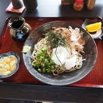 65881249 - おろし蕎麦(750円)2017年4月