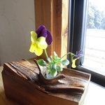 小さな宿&レストラン しいの木やま - 窓際に飾られた小花