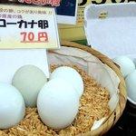 弁天の里 - 直売店で売っていたアローカナの青い卵 初めて見た