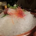 65949988 - 大鉢に氷の山
