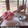 吹上の森 - 料理写真:いちごのかき氷・小