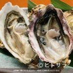 貝料理専門店 磯ばし - ヘルシーで美肌効果が期待できる貝料理はいかがですか?
