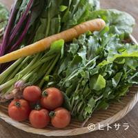 カフェ こくう - 今帰仁村で採れる新鮮な季節の島 野菜