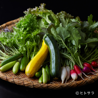 契約農家で丹精込めてつくられる、とれたての野菜を