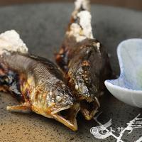 柳家 - 岐阜県下の名鮎を炭火で丁寧に仕上げた『天然鮎 塩焼き』