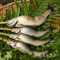 柳家 - 天然物にこだわった地元で採れるジビエ、鮎、鰻、松茸、きのこを