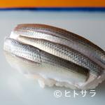 銀座寿司幸本店 - 晩夏が旬。コハダの幼魚である『シンコ』