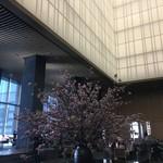 ザ・ラウンジ byアマン - 天井がとても高い!