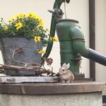 石窯パン・和みカフェ ゆるり -