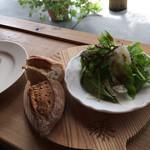 ミオン ガーデンカフェ - パンと野菜サラダ。