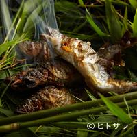 美山荘 - 初夏のご馳走は、まず鮎から