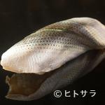 江戸前鮨 二鶴 - 清々しい香りと、シャリとの一体感がクセになる『小肌』の握り